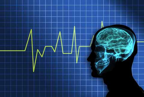 brain_brainwaves